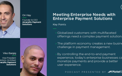 Meeting Enterprise Needs with Enterprise Payment Solutions
